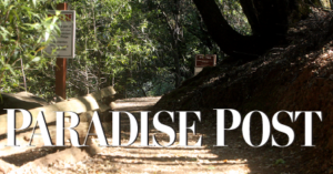 Paradise Site Icon 1.png